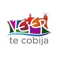 Logo-Vejer-de-la-Frontera-Cadiz