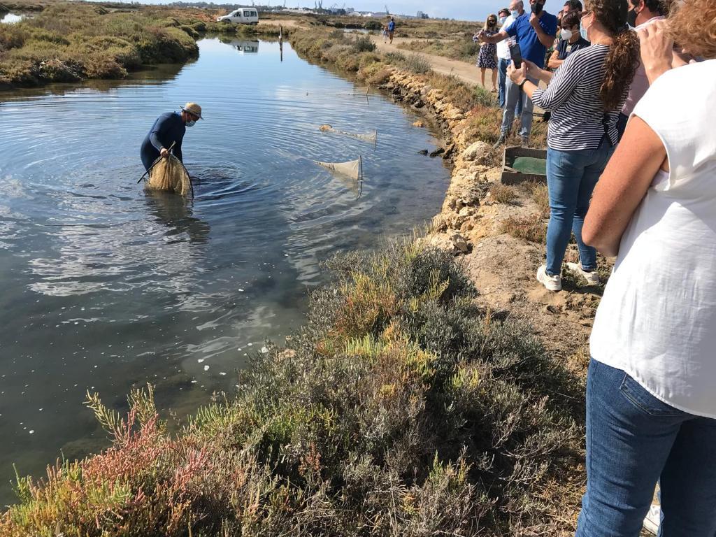 despesque estero parques naturales Cadiz marismas bahía de Cádiz y doñana
